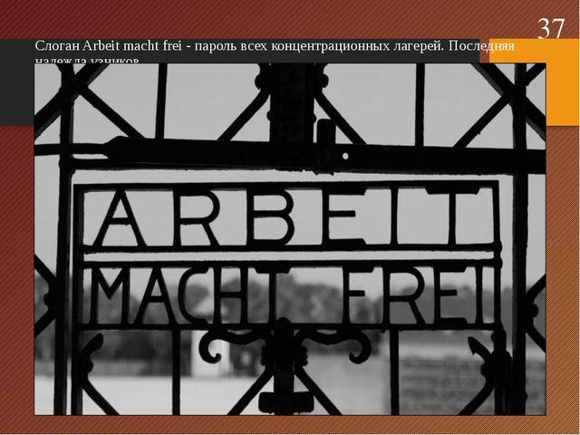 Слоган Arbeit macht frei - пароль всех концентрационных лагерей. Последняя на...