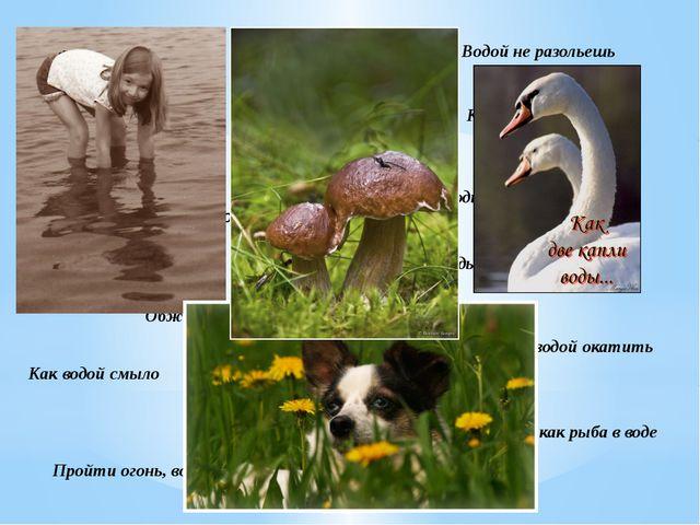 Вилами по воде писано Водой не разольешь Выйти сухим из воды Как в воду канут...