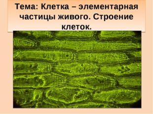 Тема: Клетка – элементарная частицы живого. Строение клеток.