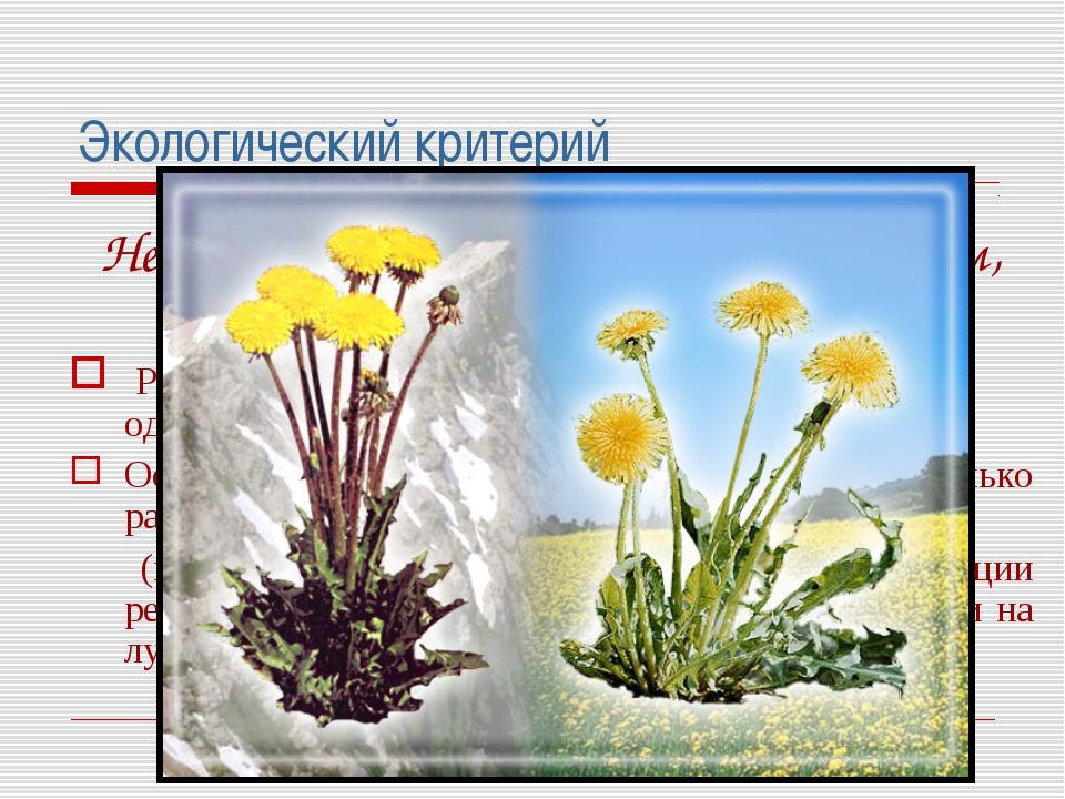 Экологический критерий Не является основным и единственным, так как: Разные в...