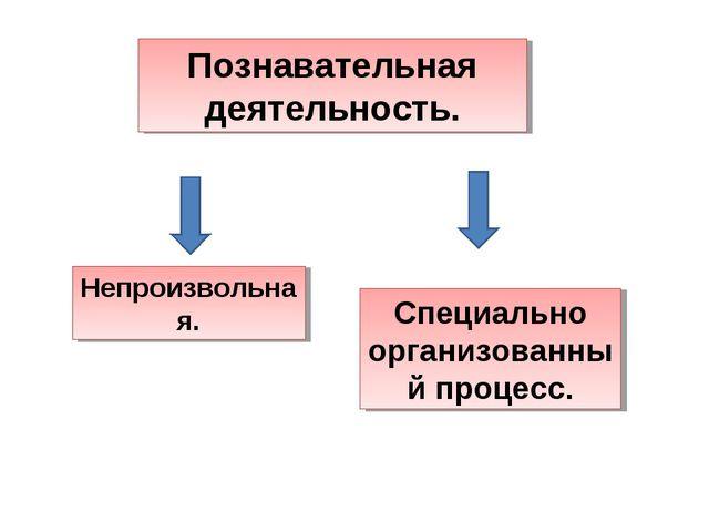 Познавательная деятельность. Непроизвольная. Специально организованный процесс.