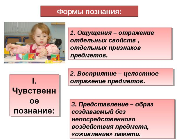 Формы познания: I. Чувственное познание: 1. Ощущения – отражение отдельных св...