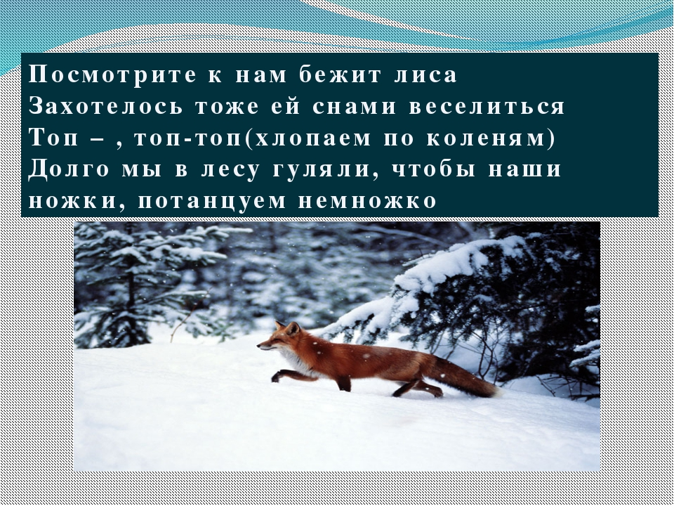 Посмотрите к нам бежит лиса Захотелось тоже ей снами веселиться Топ – , топ-т...