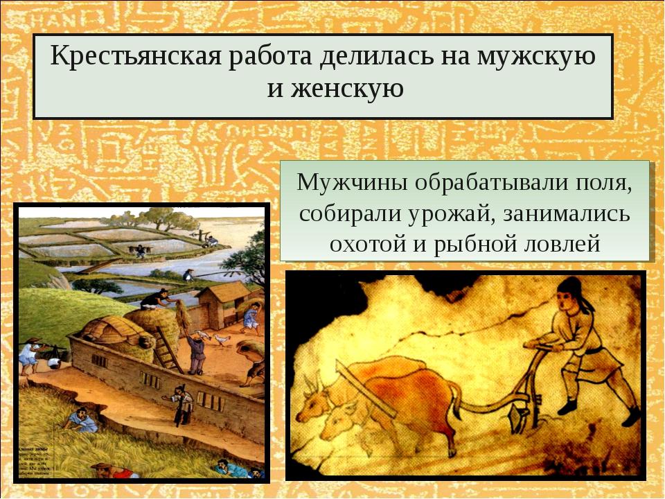 Крестьянская работа делилась на мужскую и женскую Мужчины обрабатывали поля,...