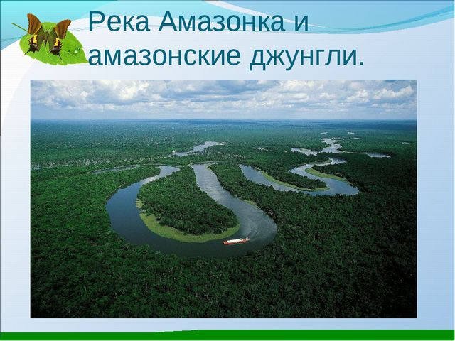 Река Амазонка и амазонские джунгли.