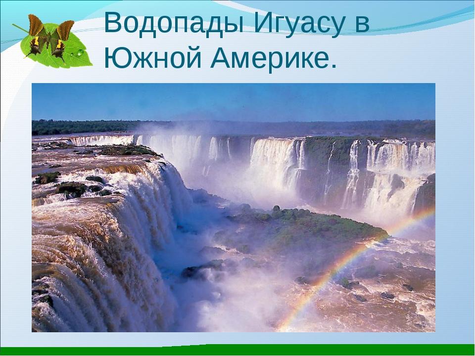 Водопады Игуасу в Южной Америке.