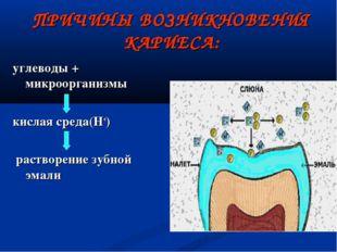 ПРИЧИНЫ ВОЗНИКНОВЕНИЯ КАРИЕСА: углеводы + микроорганизмы  кислая среда(Н+) р