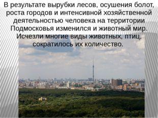 В результате вырубки лесов, осушения болот, роста городов и интенсивной хозяй