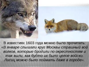 В известиях 1603 года можно было прочитать: «В январе слышали круг Москвы стр