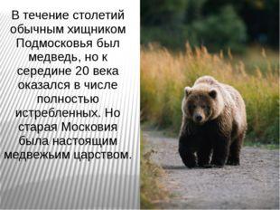 В течение столетий обычным хищником Подмосковья был медведь, но к середине 20