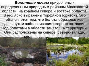 Болотные почвы приурочены к определенным природным районам Московской области