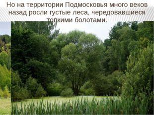 Но на территории Подмосковья много веков назад росли густые леса, чередовавши