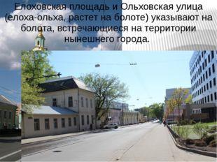 Елоховская площадь и Ольховская улица (елоха-ольха, растет на болоте) указыва