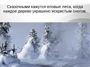 Сказочными кажутся еловые леса, когда каждое дерево украшено искристым снегом.