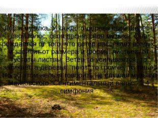 Лес и музыка. У каждого дерева свой шелест, свой голос, своя песня, своя музы