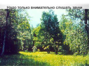 """Надо только внимательно слушать звуки деревьев. Ведь они, наверно, как-то """"го"""