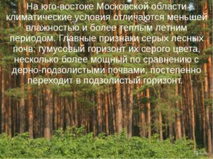 На юго-востоке Московской области климатические условия отличаются меньшей вл