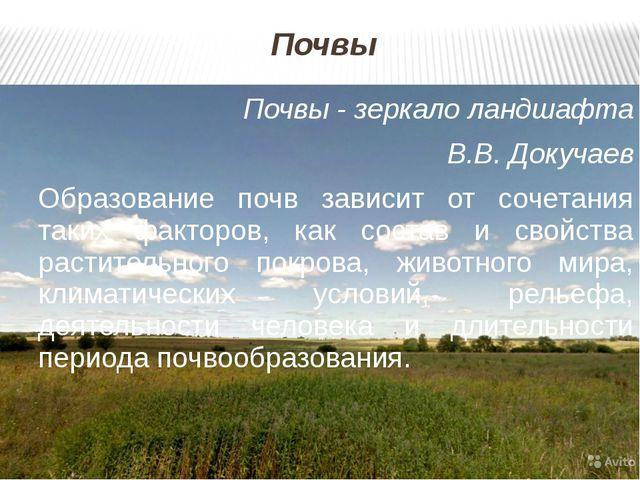 Почвы Почвы - зеркало ландшафта В.В. Докучаев Образование почв зависит от соч...