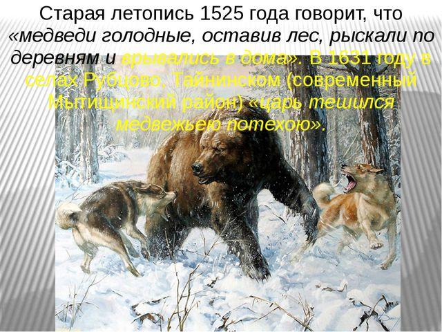 Старая летопись 1525 года говорит, что «медведи голодные, оставив лес, рыскал...