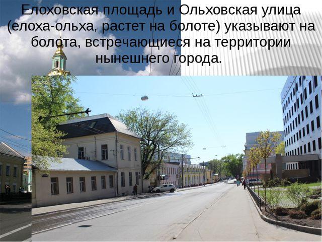 Елоховская площадь и Ольховская улица (елоха-ольха, растет на болоте) указыва...
