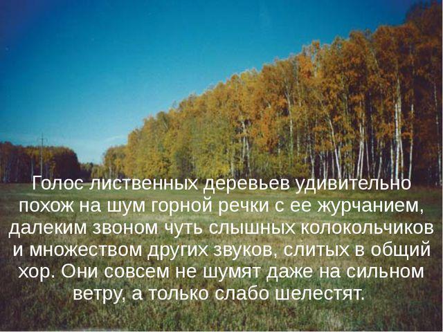 Голос лиственных деревьев удивительно похож на шум горной речки с ее журчание...