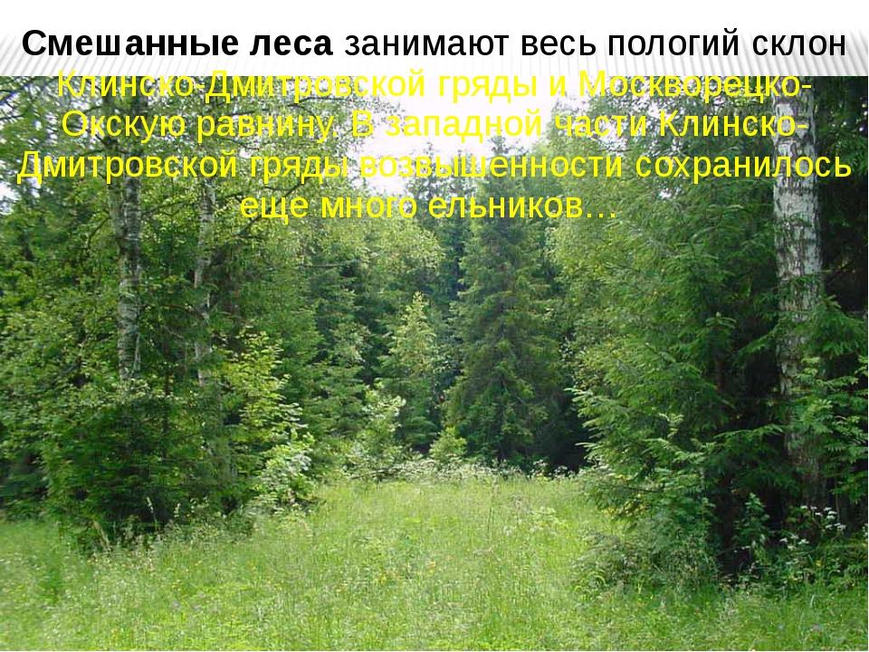 Смешанные леса занимают весь пологий склон Клинско-Дмитровской гряды и Москво...