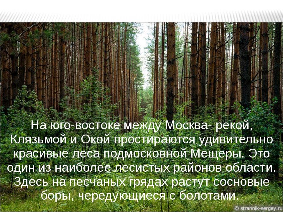 На юго-востоке между Москва- рекой, Клязьмой и Окой простираются удивительно...