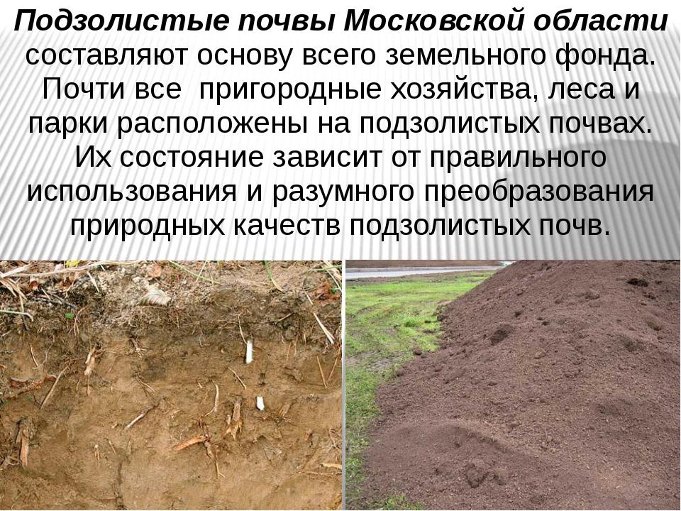 Подзолистые почвы Московской области составляют основу всего земельного фонда...