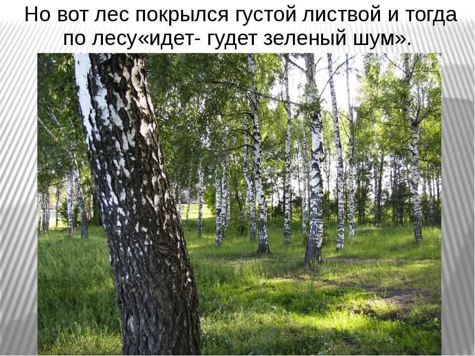 Но вот лес покрылся густой листвой и тогда по лесу«идет- гудет зеленый шум».