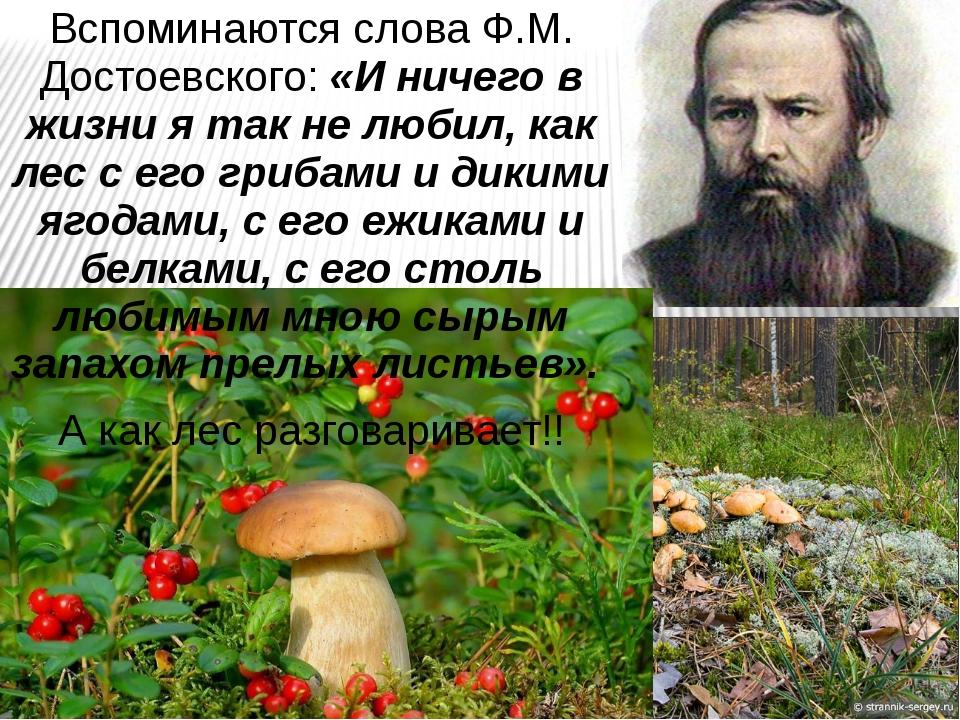 Вспоминаются слова Ф.М. Достоевского: «И ничего в жизни я так не любил, как л...