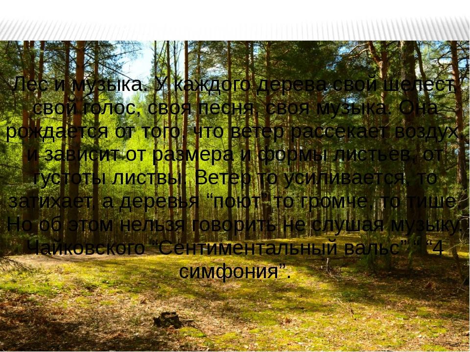 Лес и музыка. У каждого дерева свой шелест, свой голос, своя песня, своя музы...