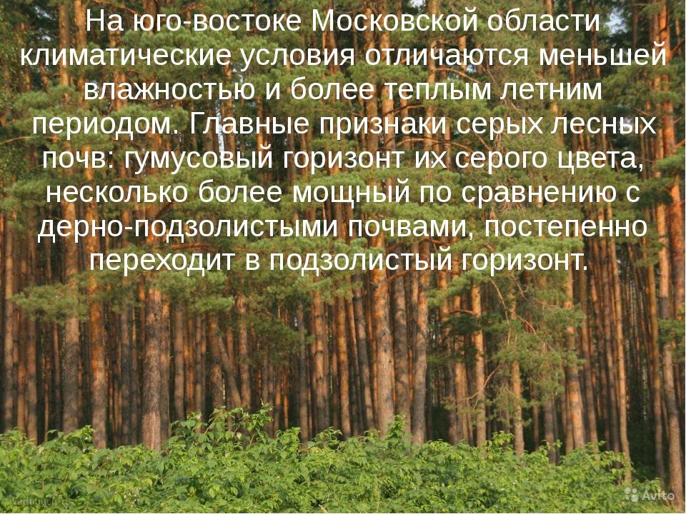 На юго-востоке Московской области климатические условия отличаются меньшей вл...