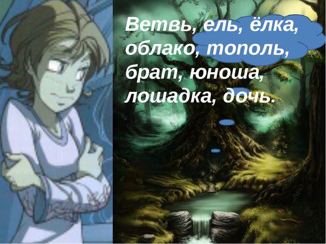 Ветвь, ель, ёлка, облако, тополь, брат, юноша, лошадка, дочь.