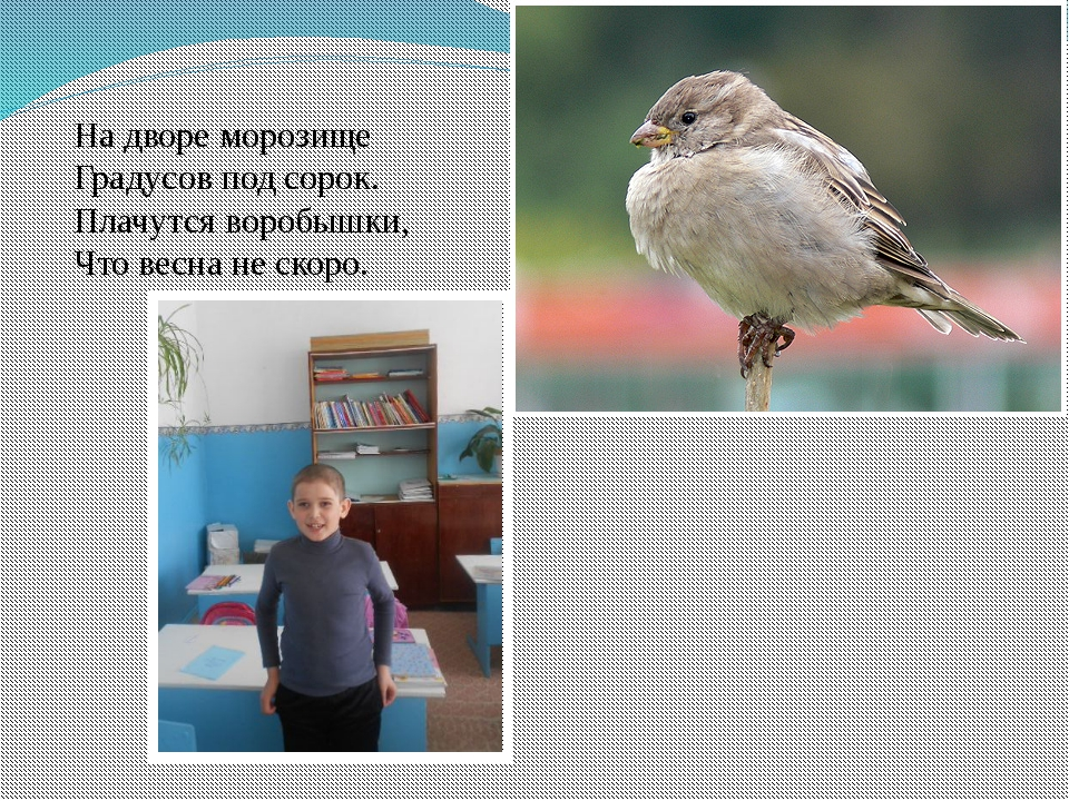На дворе морозище Градусов под сорок. Плачутся воробышки, Что весна не ско...