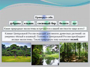 дубрава болото луг Проверьте себя. ельник сосновый бор Климат Центральной Рос