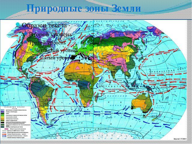 Природные зоны Земли