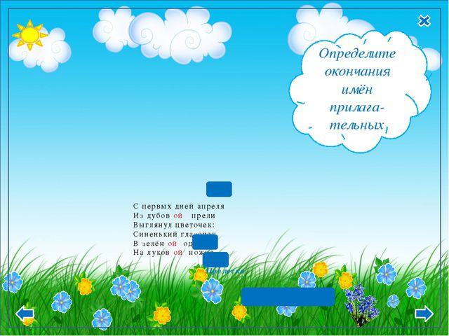 С первых дней апреля Из дубов ой прели Выглянул цветочек: Синенький глазочек...