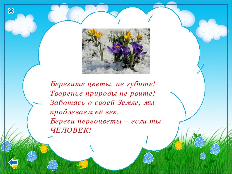 Берегите цветы, не губите! Творенье природы не рвите! Заботясь о своей Земле...
