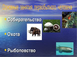 Собирательство Охота Рыболовство