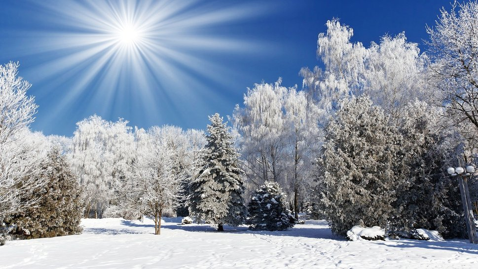 http://images.forwallpaper.com/files/thumbs/preview/15/154577__winter-sunshine_p.jpg