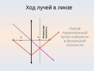 Ход лучей в линзе Любой параллельный пучок соберется в фокальной плоскости Фо
