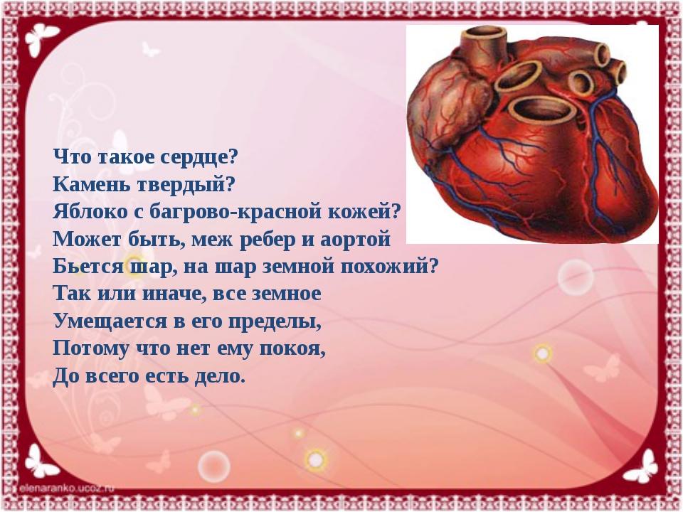 Что такое сердце? Камень твердый? Яблоко с багрово-красной кожей? Может быть,...