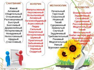 САНГВИНИК Живой Активный Общительный Отзывчивый Разговорчивый Быстрый Болтлив