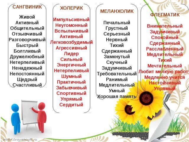 САНГВИНИК Живой Активный Общительный Отзывчивый Разговорчивый Быстрый Болтлив...