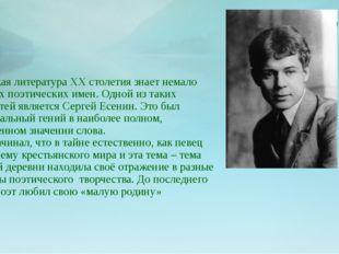 Русская литература ХХ столетия знает немало громких поэтических имен. Одной