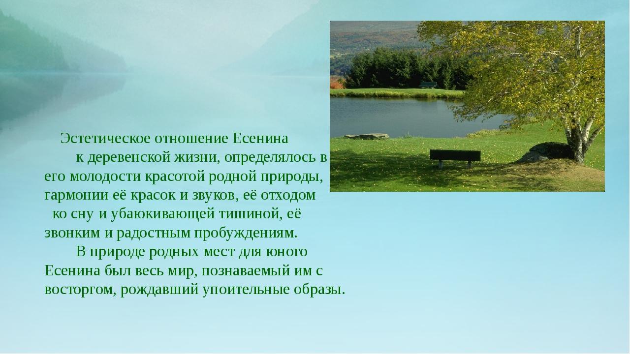 Эстетическое отношение Есенина к деревенской жизни, определялось в его молод...