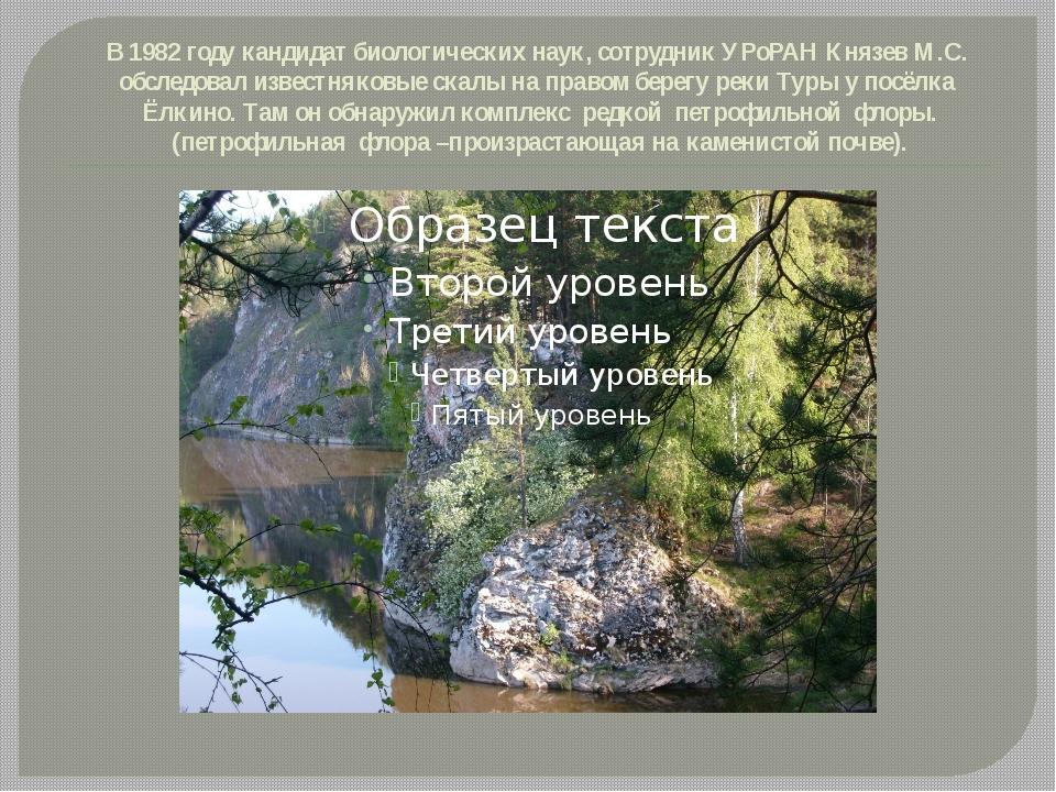 В 1982 году кандидат биологических наук, сотрудник УРоРАН Князев М.С. обследо...