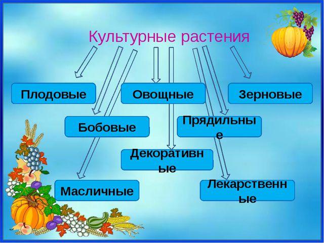 Плодовые Культурные растения Декоративные Масличные Лекарственные Зерновые Бо...