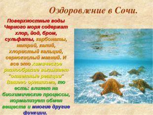 Оздоровление в Сочи. Поверхностные воды Черного моря содержат хлор, йод, бром