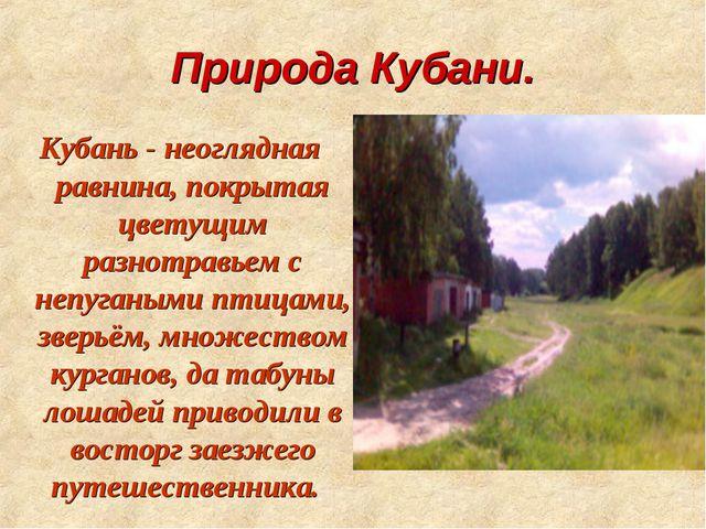 Природа Кубани. Кубань - неоглядная равнина, покрытая цветущим разнотравьем с...